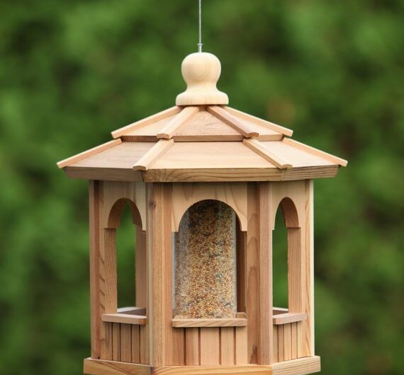 Cool Bird Feeder DIY Ideas